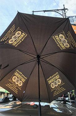 Big Coin Umbrella